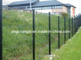 Frontière de sécurité de treillis métallique (AOSHENG-6005)