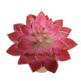 정원 가정 훈장을%s 색깔 여러가지 인공 꽃 Succulents