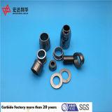 Coussinets de roulement de carbure de tungstène de Zhuzhou