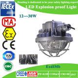 Passway 채광을%s 에너지 절약 12-30W Exdi LED 폭발 방지 빛