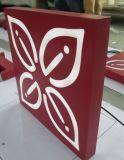 Customed Stailess 가벼운 상자를 광고하는 강철 페인트 LED 아크릴 사각