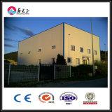 Magazzino economico moderno personalizzato della struttura d'acciaio (BYSS-001)