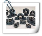 Le roulement FL205, FL206, FL207, le roulement UC05, UC206, UC207 de bloc de palier de garniture intérieure d'acier au chrome FL209 a monté la qualité de logement des roulements