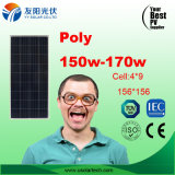 bester Sonnenkollektor des Preis-150W-170W auf Lager