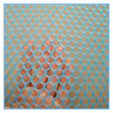 Maglia dell'HDPE/reticolato piano di plastica del pollame/maglia di plastica