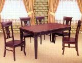 Chaises ydraulic de Tableau de HDining et de coiffeur de la chaise (HS-006) (LY6201)