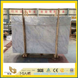 Brame de marbre blanche de Bianco Carrare pour le plancher
