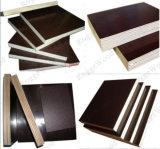 A película de Brown enfrentou a madeira compensada, madeira compensada 1220*2440*9-21mm da construção