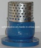 Fer de moulage/soupape d'aspiration malléable de fer avec l'écran de solides solubles
