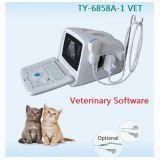 B/W Typ preiswerter Ultraschallscanner für Tiergebrauch