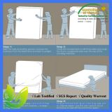 Fodera per materassi sicura della prova dell'errore di programma di base di Shiled di sonno