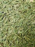 Nuovo tè verde