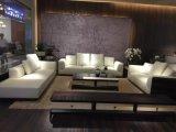 Sofa de cuir de Recliner de mode pour l'usage de Chambre (SF049)