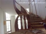 Corrimão da escadaria da madeira contínua da espiral da forma da DM Kahua de Foshan