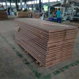 فولاذ كبيرة مسلّحة خشبيّة أمن باب