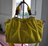 Nylon delle signore di modo e borsa del cuoio (BS12005)