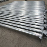 11m Hot Deep Galvanized Octagonal Steel 폴란드