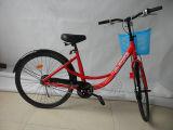 Bike общественного кампуса bike- толковейшего общественный портативный
