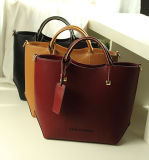 Сумка Lady Tote конструктора для Fashion 2014 (XP108)