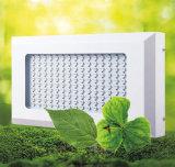 450W 정원 빛 LED 플랜트 빛 LED는 빛을 증가한다