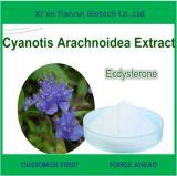 Cyanotis Arachnoidea Ecdysoneのエキス、Cyanotis Ecdysone、Ecdysone
