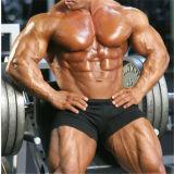 BodybuildingのためのMuscle Methyldrostanolone Anabolic Steroidを高めなさい