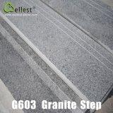 Beta punti grigi/scale/impronte del granito di G603 Cina Rosa con metallo antiscorrimento