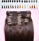 Hair Extension Remy Hair Extension에 있는 페루 Virgin Hair Clip