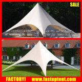 barraca de acampamento do famoso da máscara da estrela da família do diâmetro 10m de 6m 8m