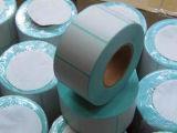 대량 생산 백지 포장 레이블