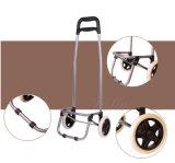 Lichtgewicht Vouwbaar het Winkelen van 2 Wielen Karretje met Koelere Zak voor Picknick en het Winkelen