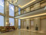 مسافر مصعد يجعل في الصين [ستينلسّ ستيل] مصعد