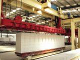 L'alta tecnologia ha sterilizzato nell'autoclave la macchina per fabbricare i mattoni e la pianta leggere concrete aerate del blocco
