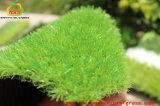 China-künstliches Gras für die Landschaftsgestaltung mit Svhc Prüfung durch SGS