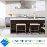 Armadi da cucina classici della mobilia della casa modulare (ZY 1008)