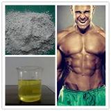Propionato Esteroide de la Testosterona de la Hormona Anabólica Segura para los Bodybuilders
