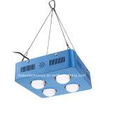 Voller Specturm 300W PFEILER LED wachsen für Tomate/Kopfsalat hell
