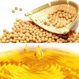 20t Soybean Oil Refinery Machine、Soybean Oil Extraction Machine