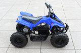 2015 새로운 Sale에 세륨 Ceritifcate Hot를 가진 Sale를 위한 500W 36V Kids Amphibious ATV