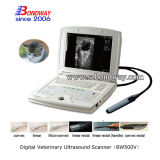 Ultrasound Equine Instruments Veterinay Portable