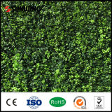 Home Decoration를 위한 정원 New Design PVC Coated Artificial Fence Panel