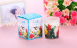 Natal Scented Soy Wax Candle em Glass Jar com Gift Box