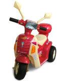 Езда на мотоцикле 7396