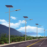 Jinshang Lights 8m 60W LED Solar Street Light (JINSHANG SOLAR)