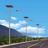 Jinshang Allume le Réverbère Solaire de 8m 60W LED (JS-A20158160)