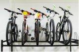 Armoire en acier galvanisée Chaud-Plongée de vélo de Deux-Rangées