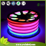 24V를 가진 디지털 Programmable RGB LED Neon Flex