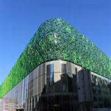 Hyperbolic curvo Aluminum Panel per Cladding Wall