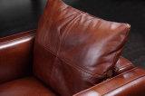 Sofà europeo italiano del cuoio genuino di disegno (HC3026)