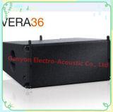 Sistema de matriz de linha Vera36 + S33, caixa de alto-falante ao ar livre, alto-falante profissional